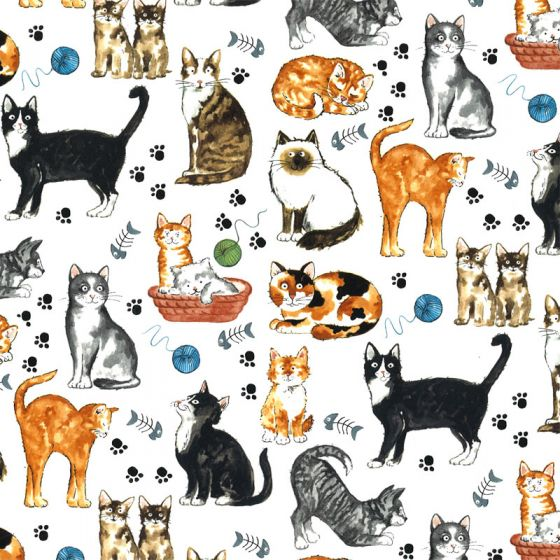 Cats Decal 22 x 22cm